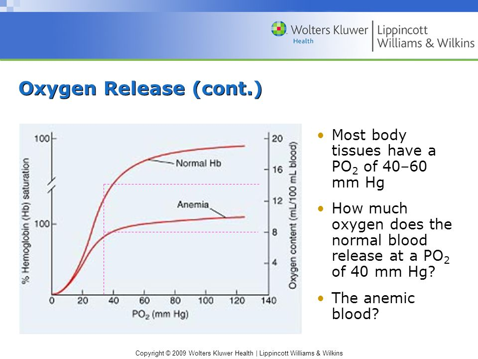 Copyright © 2009 Wolters Kluwer Health | Lippincott Williams & Wilkins Oxygen Release (cont.) Most body tissues have a PO 2 of 40–60 mm Hg How much oxygen does the normal blood release at a PO 2 of 40 mm Hg.