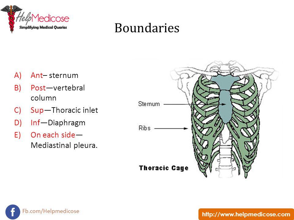 http://www.helpmedicose.com Fb.com/Helpmedicose Boundaries A)Ant– sternum B)Post—vertebral column C)Sup—Thoracic inlet D)Inf—Diaphragm E)On each side—
