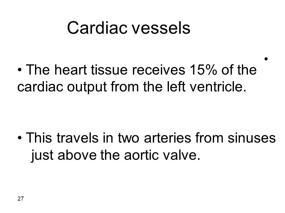 27 Cardiac vessels The heart tissue receives 15% of the cardiac output from the left ventricle.