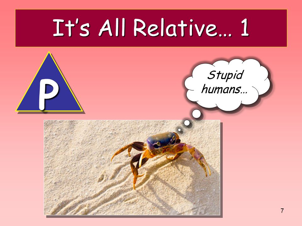 7 It's All Relative… 1 Stupid humans… PP
