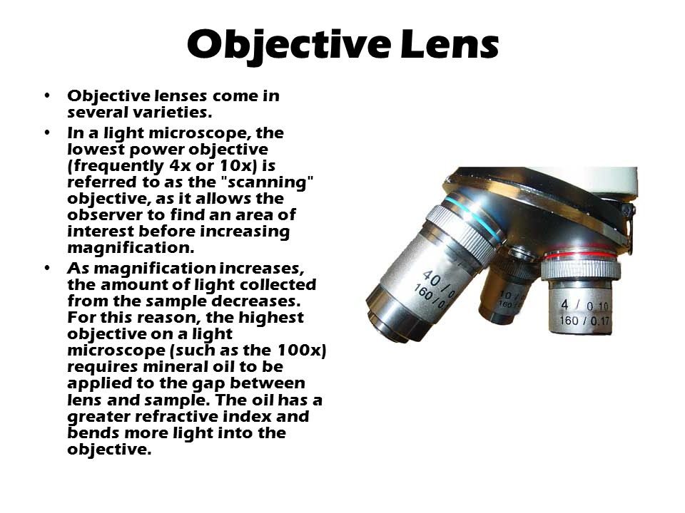 Objective Lens Objective lenses come in several varieties.
