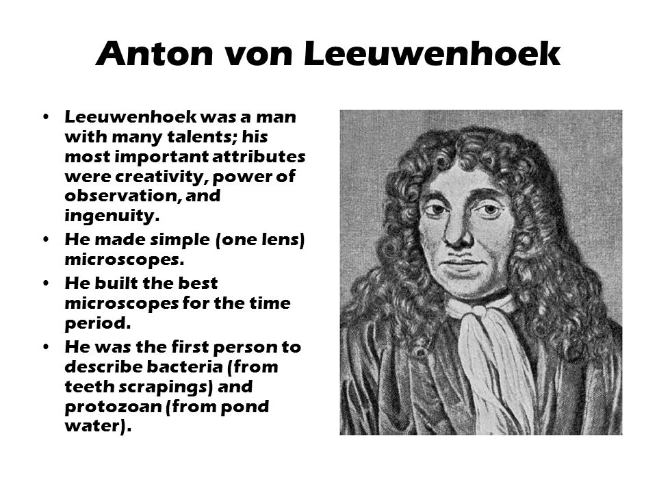 Anton von Leeuwenhoek Leeuwenhoek was a man with many talents; his most important attributes were creativity, power of observation, and ingenuity.