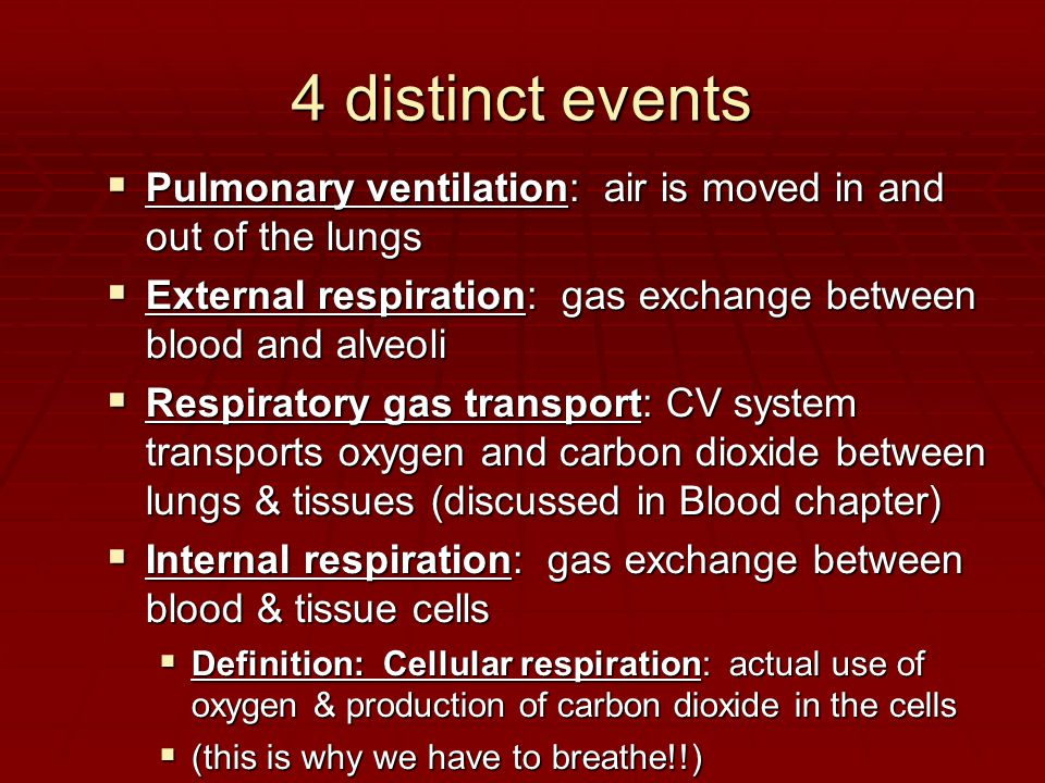 4 distinct events  Pulmonary ventilation: air is moved in and out of the lungs  External respiration: gas exchange between blood and alveoli  Respiratory gas transport: CV system transports oxygen and carbon dioxide between lungs & tissues (discussed in Blood chapter)  Internal respiration: gas exchange between blood & tissue cells  Definition: Cellular respiration: actual use of oxygen & production of carbon dioxide in the cells  (this is why we have to breathe!!)