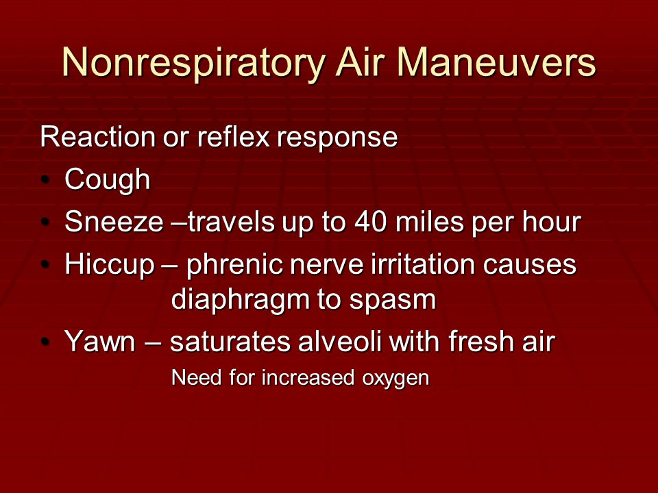 Nonrespiratory Air Maneuvers Reaction or reflex response CoughCough Sneeze –travels up to 40 miles per hourSneeze –travels up to 40 miles per hour Hiccup – phrenic nerve irritation causes diaphragm to spasmHiccup – phrenic nerve irritation causes diaphragm to spasm Yawn – saturates alveoli with fresh airYawn – saturates alveoli with fresh air Need for increased oxygen