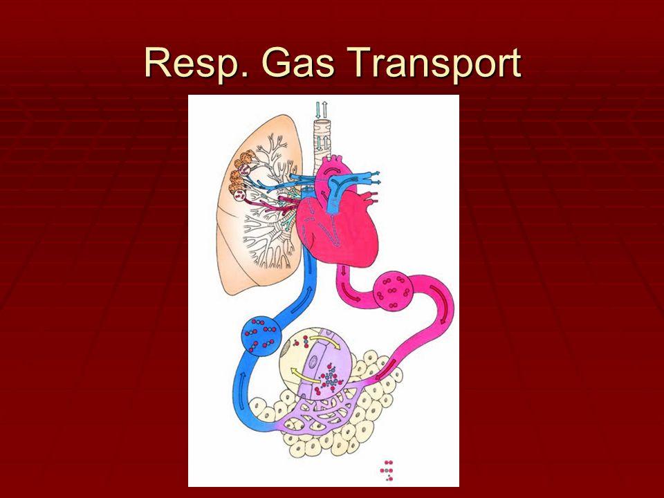 Resp. Gas Transport