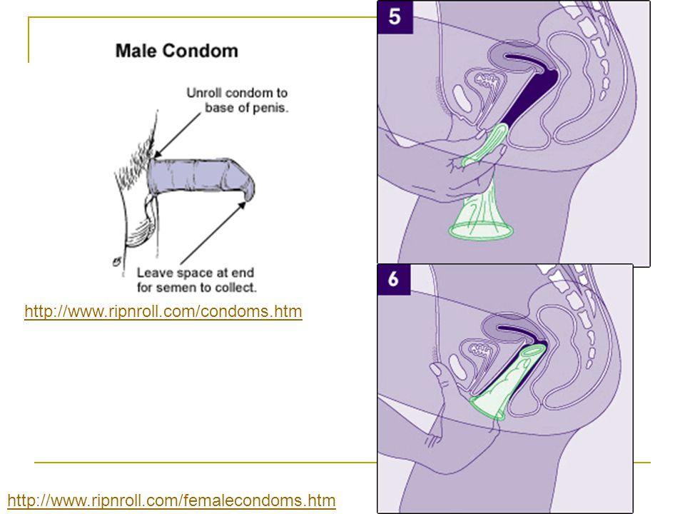 http://www.ripnroll.com/femalecondoms.htm http://www.ripnroll.com/condoms.htm