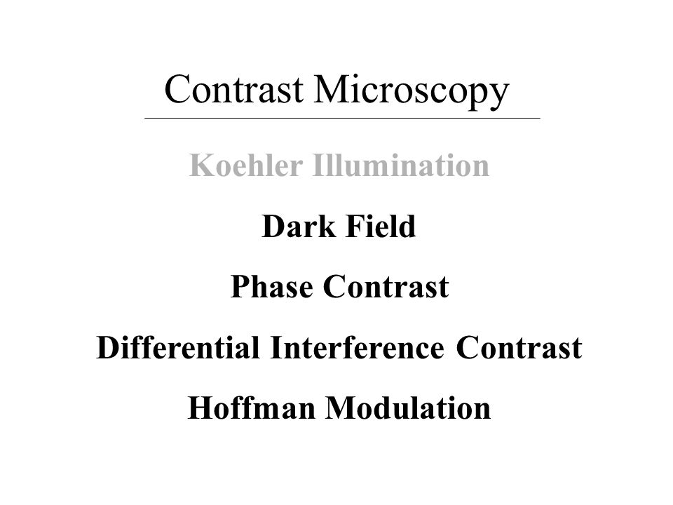 Contrast Microscopy Koehler Illumination Dark Field Phase Contrast Differential Interference Contrast Hoffman Modulation