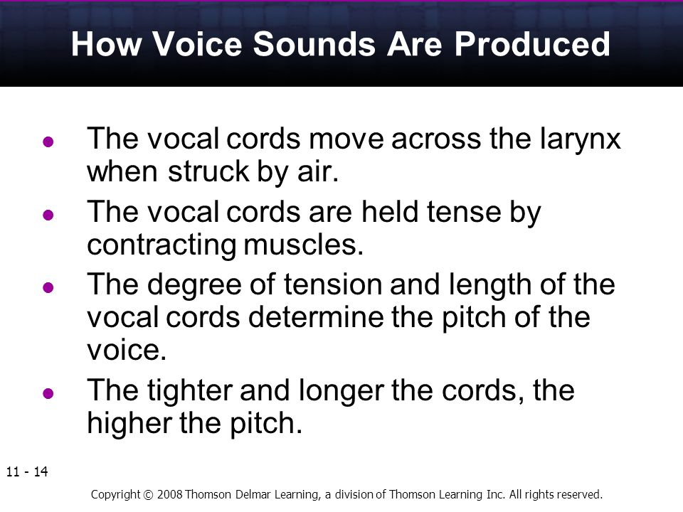 Copyright © 2008 Thomson Delmar Learning, a division of Thomson Learning Inc. All rights reserved. 11 - 14 How Voice Sounds Are Produced The vocal cor