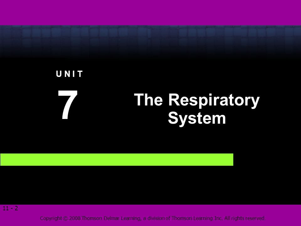 Copyright © 2008 Thomson Delmar Learning, a division of Thomson Learning Inc. All rights reserved. 11 - 2 The Respiratory System 7 7 U N I T
