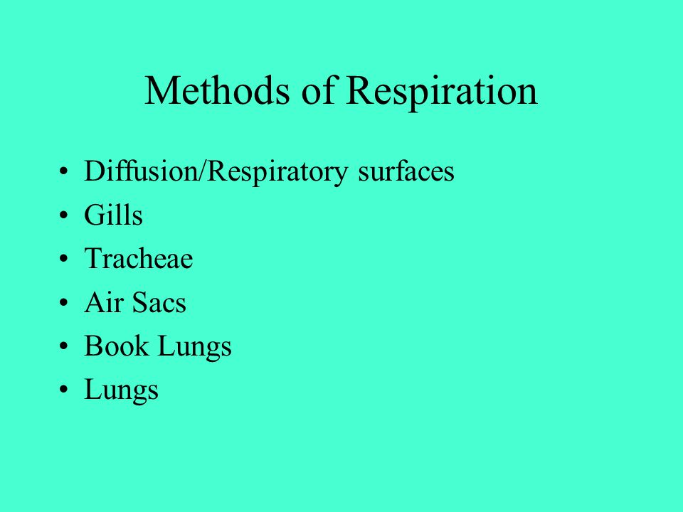 Methods of Respiration Diffusion/Respiratory surfaces Gills Tracheae Air Sacs Book Lungs Lungs