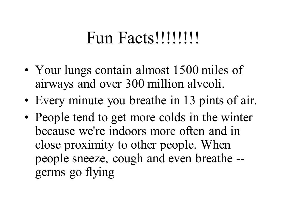 Fun Facts!!!!!!!.Your lungs contain almost 1500 miles of airways and over 300 million alveoli.