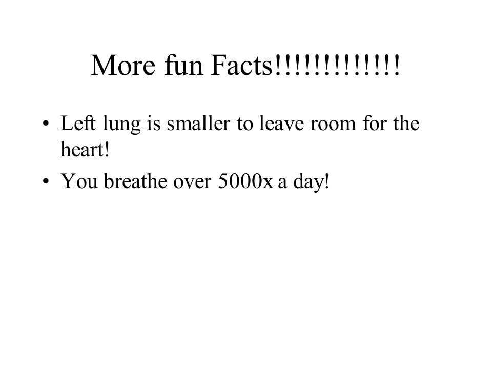More fun Facts!!!!!!!!!!!!.Left lung is smaller to leave room for the heart.
