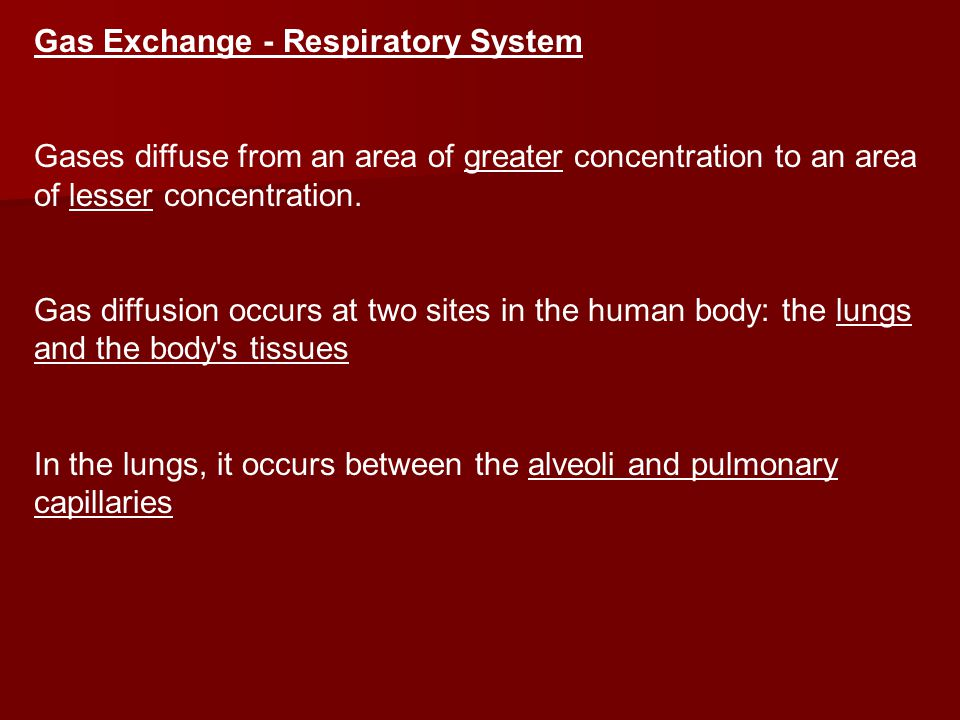 Gas Exchange - Respiratory System Gases diffuse from an area of greater concentration to an area of lesser concentration.