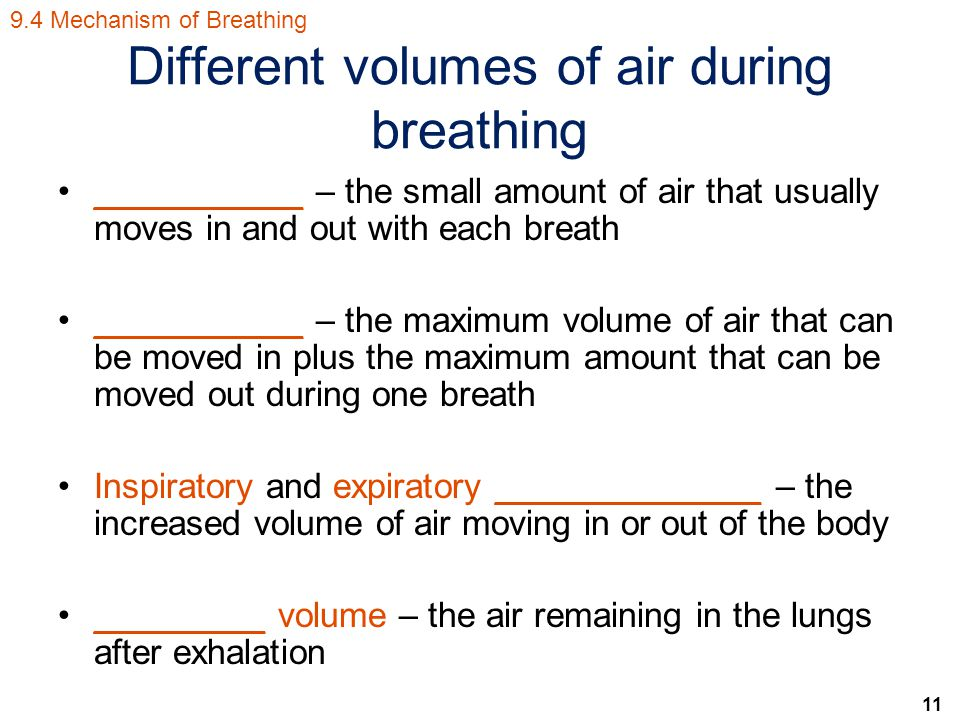 11 Different volumes of air during breathing ___________ – the small amount of air that usually moves in and out with each breath ___________ – the maximum volume of air that can be moved in plus the maximum amount that can be moved out during one breath Inspiratory and expiratory ______________ – the increased volume of air moving in or out of the body _________ volume – the air remaining in the lungs after exhalation 9.4 Mechanism of Breathing
