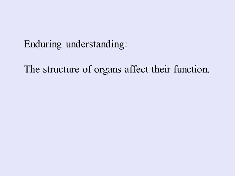 Enduring understanding: The structure of organs affect their function.