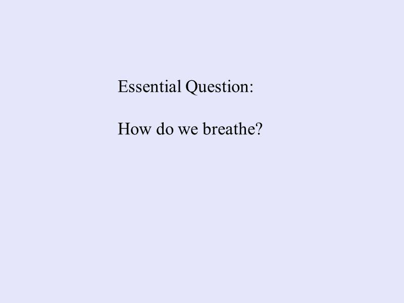 Essential Question: How do we breathe?