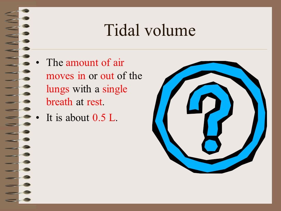 Tidal volume The amount of air moves in or out of the lungs with a single breath at rest. It is about 0.5 L.