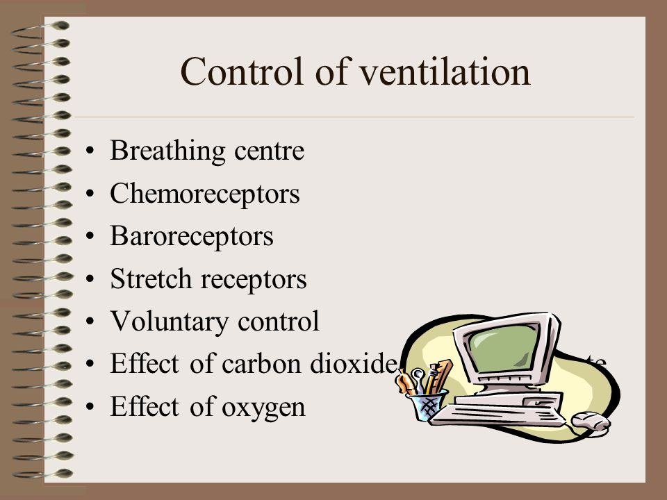 Control of ventilation Breathing centre Chemoreceptors Baroreceptors Stretch receptors Voluntary control Effect of carbon dioxide on breathing rate Ef