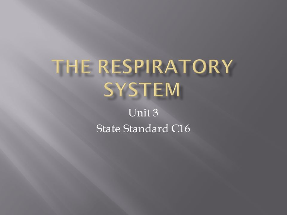  Students will be able to describe the structures of the respiratory system  Students will be able to explain how these structures bring oxygen and nutrients to the cells  Students will be able to identify and describe the effects of smoking on lung capacity and the destruction that it causes to the respiratory system