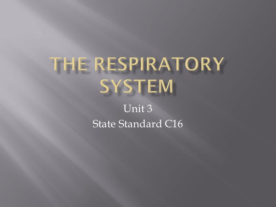 Unit 3 State Standard C16