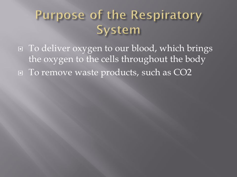  To deliver oxygen to our blood, which brings the oxygen to the cells throughout the body  To remove waste products, such as CO2