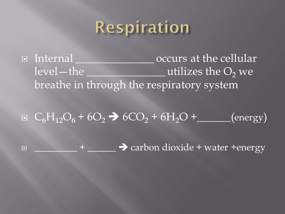  Internal ______________ occurs at the cellular level—the ______________ utilizes the O2 O2 we breathe in through the respiratory system  C 6 H 12 O 6 + 6O 2  6CO 2 + 6H 2 O +______( energy )  _________ + ______  carbon dioxide + water +energy