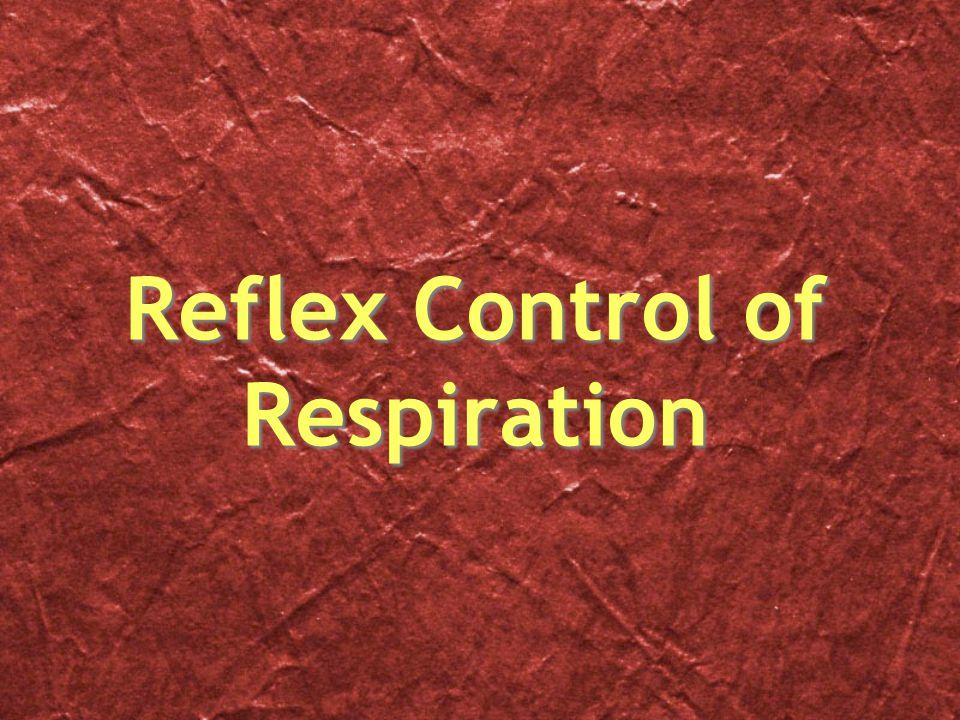 Reflex Control of Respiration