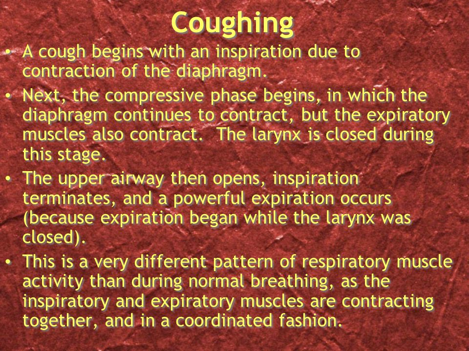 Coughing A cough begins with an inspiration due to contraction of the diaphragm.