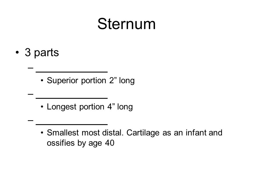 Sternum 3 parts –_____________ Superior portion 2 long –_____________ Longest portion 4 long –_____________ Smallest most distal.