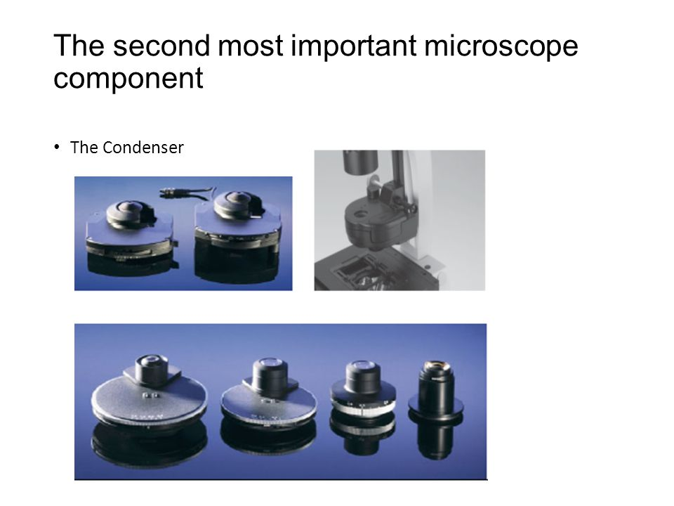 The second most important microscope component The Condenser