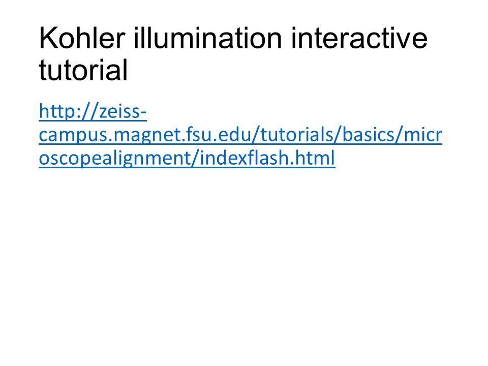 Kohler illumination interactive tutorial http://zeiss- campus.magnet.fsu.edu/tutorials/basics/micr oscopealignment/indexflash.html