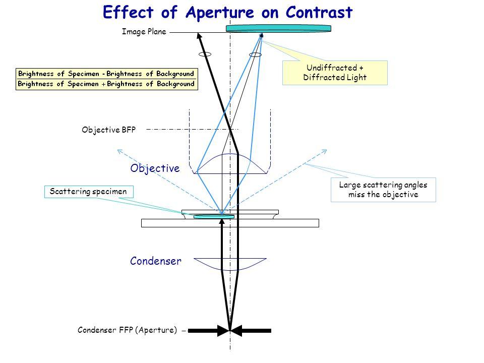 Objective BFP Image Plane Condenser FFP (Aperture) Objective Condenser Scattering specimen Large scattering angles miss the objective Effect of Apertu