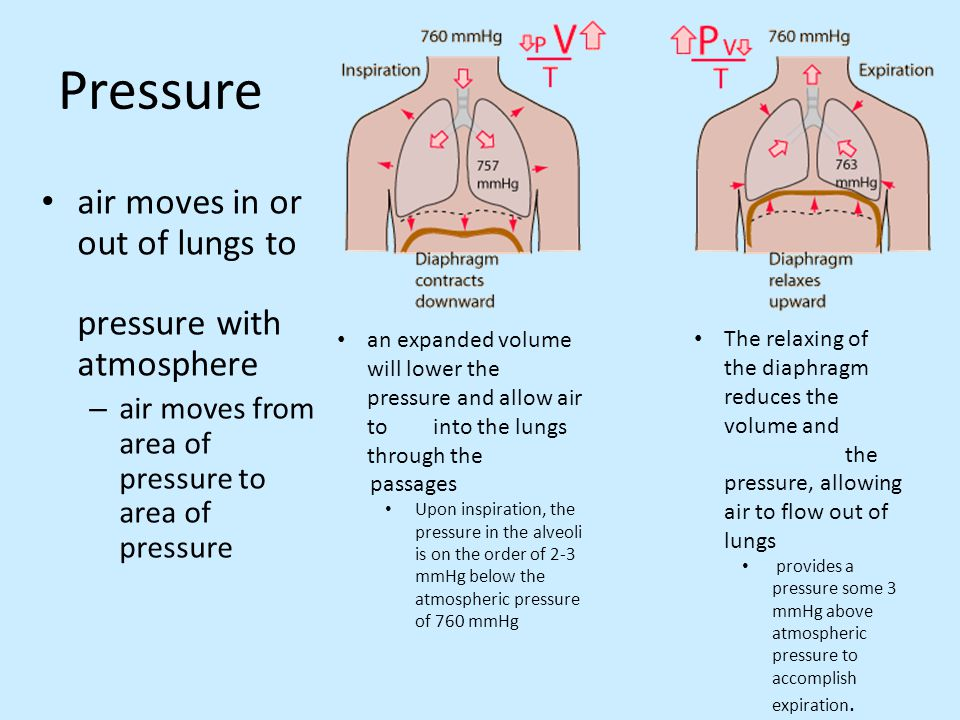 Pressure air moves in or out of lungs to pressure with atmosphere – air moves from area of pressure to area of pressure an expanded volume will lower