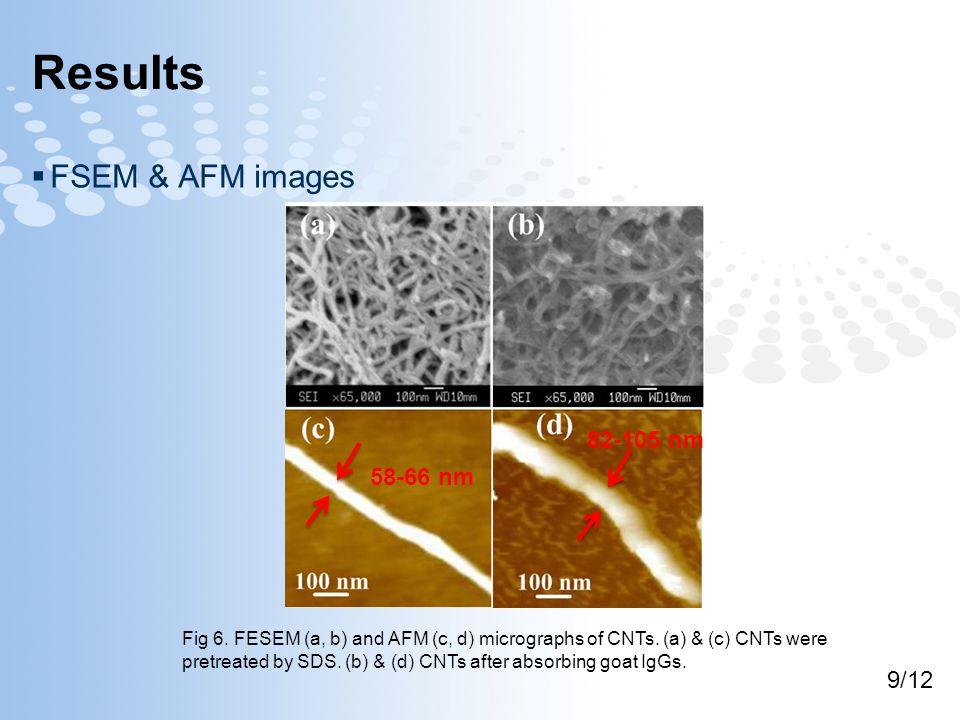 Results  FSEM & AFM images Fig 6.FESEM (a, b) and AFM (c, d) micrographs of CNTs.