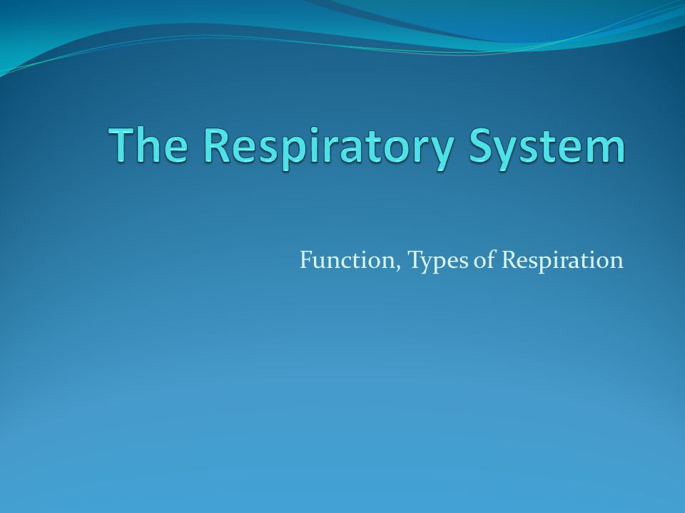 Function, Types of Respiration