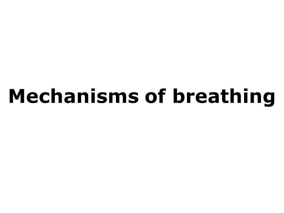 Mechanisms of breathing 1 Mechanisms of breathing