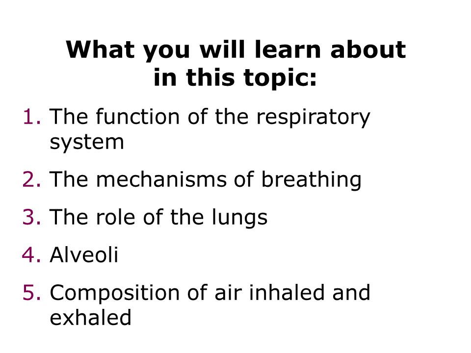 What you will learn about in this topic: 1.The function of the respiratory system 2.The mechanisms of breathing 3.The role of the lungs 4.Alveoli 5.Co