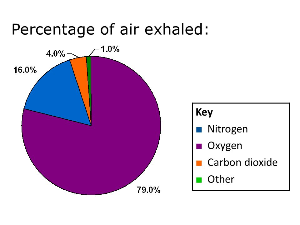 Percentage of air exhaled: Key ■ Nitrogen ■ Oxygen ■ Carbon dioxide ■ Other Mechanisms of breathing 12