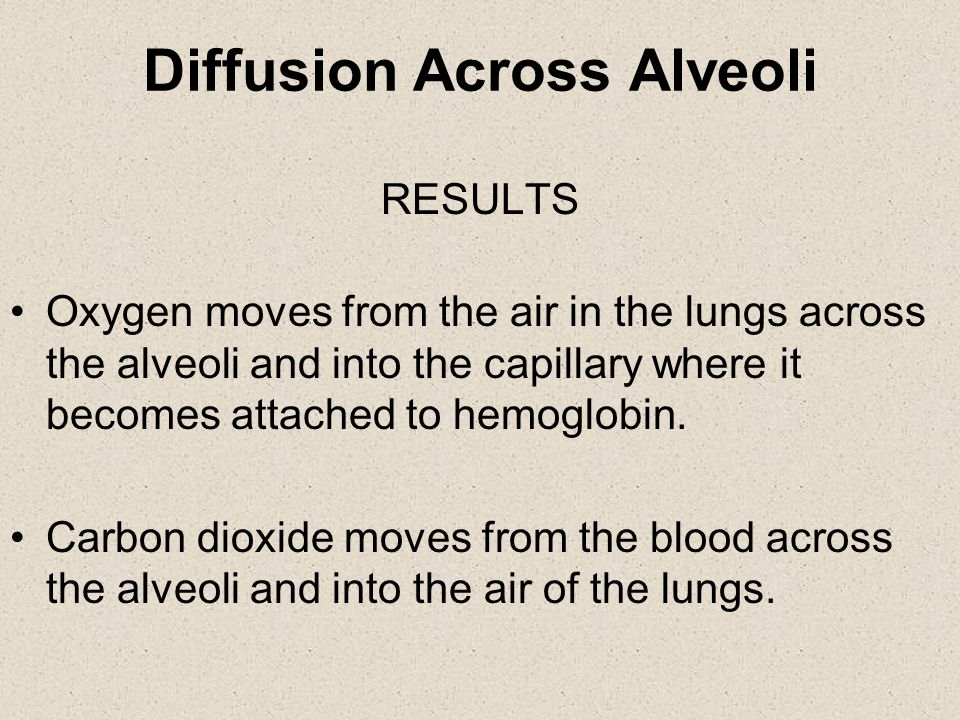 Diffusion Across Alveoli In LUNGS – –Higher concentration of oxygen than in blood.
