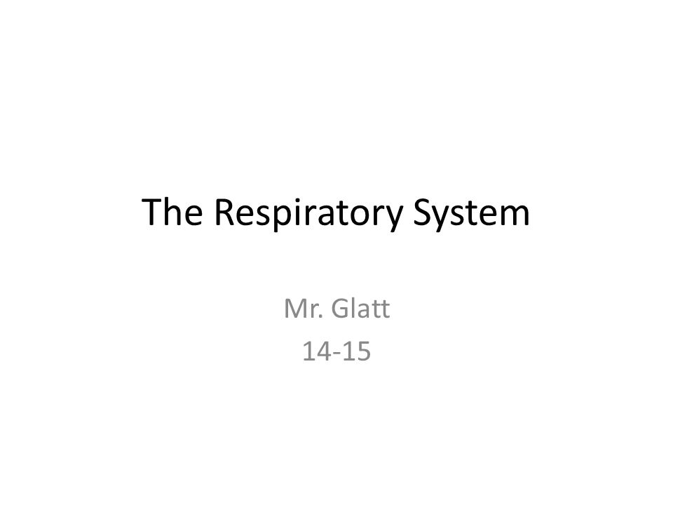 The Respiratory System Mr. Glatt 14-15