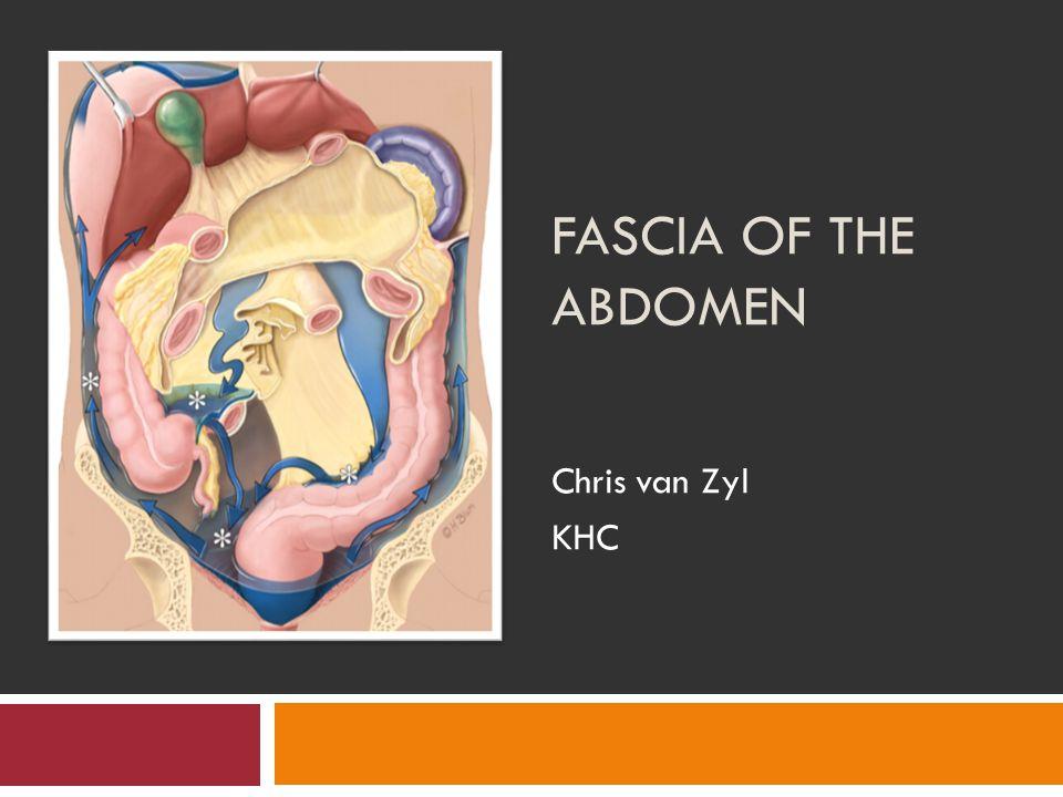 FASCIA OF THE ABDOMEN Chris van Zyl KHC