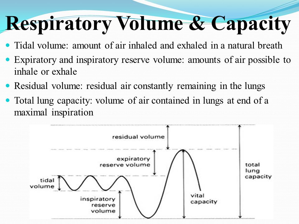 Respiratory Volume & Capacity Tidal volume: amount of air inhaled and exhaled in a natural breath Expiratory and inspiratory reserve volume: amounts o