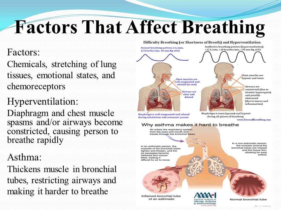Factors That Affect Breathing Hyperventilation: Diaphragm and chest muscle spasms and/or airways become constricted, causing person to breathe rapidly