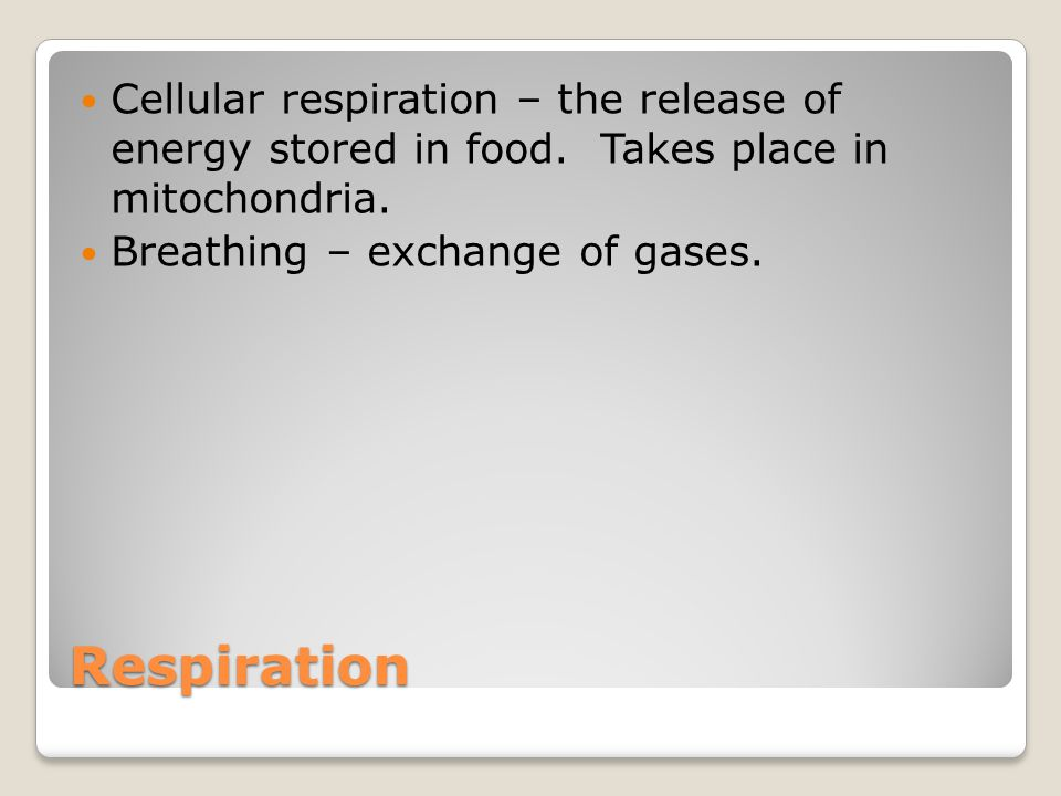 Respiration Cellular respiration – the release of energy stored in food. Takes place in mitochondria. Breathing – exchange of gases.