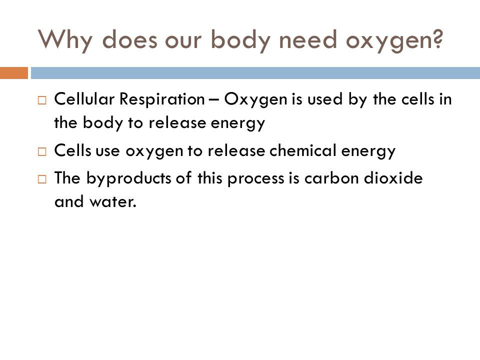 Why does our body need oxygen?  Cellular Respiration – Oxygen is used by the cells in the body to release energy  Cells use oxygen to release chemic