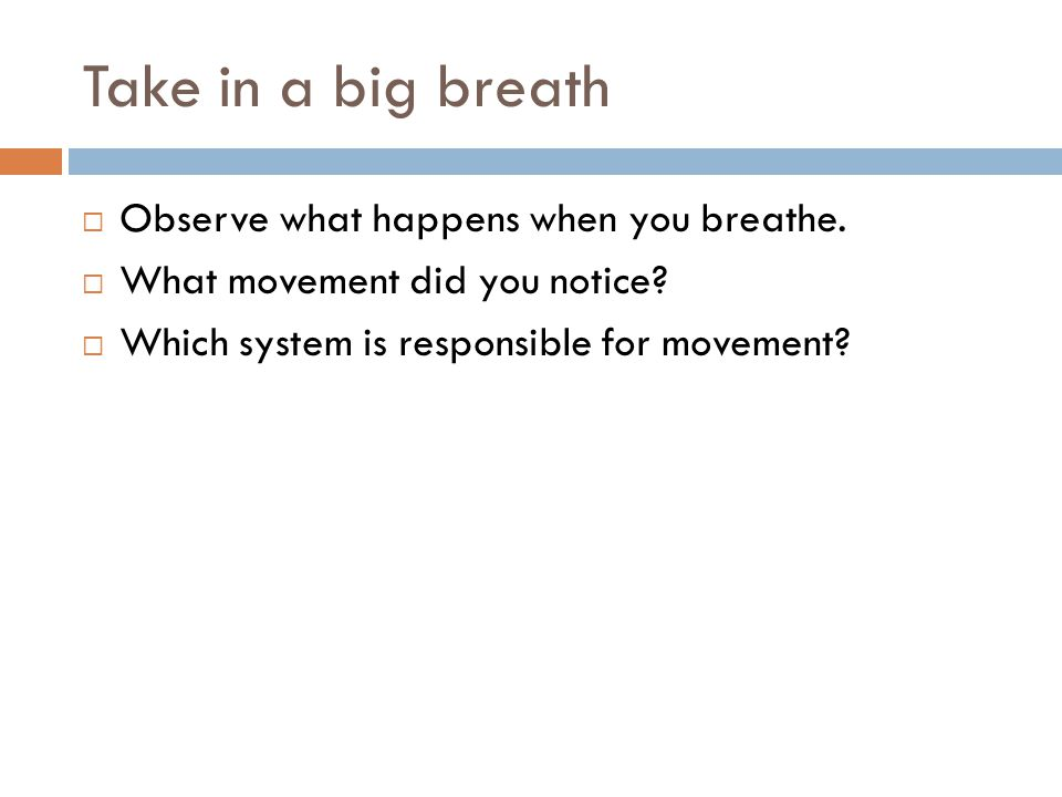 Take in a big breath  Observe what happens when you breathe.  What movement did you notice?  Which system is responsible for movement?