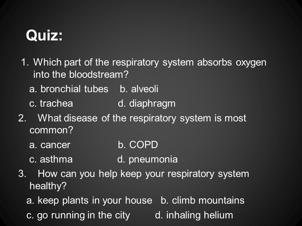Quiz: 1.Which part of the respiratory system absorbs oxygen into the bloodstream? a. bronchial tubes b. alveoli c. trachea d. diaphragm 2. What diseas