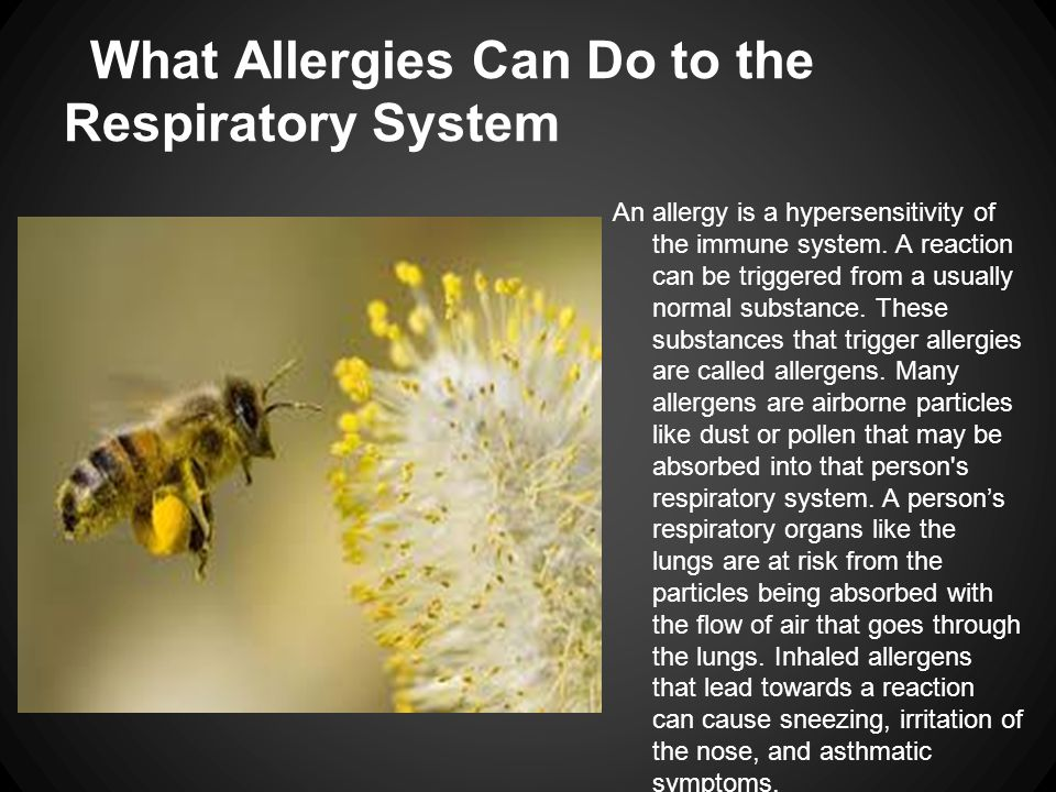 What Allergies Can Do to the Respiratory System An allergy is a hypersensitivity of the immune system. A reaction can be triggered from a usually norm
