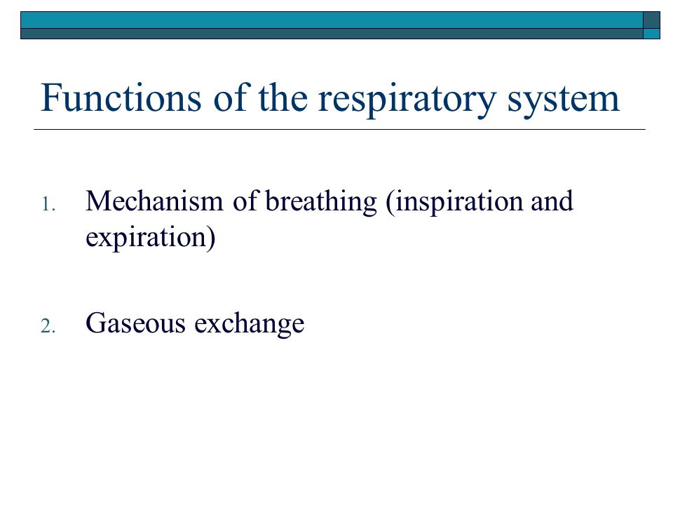Functions of the respiratory system 1. Mechanism of breathing (inspiration and expiration) 2. Gaseous exchange