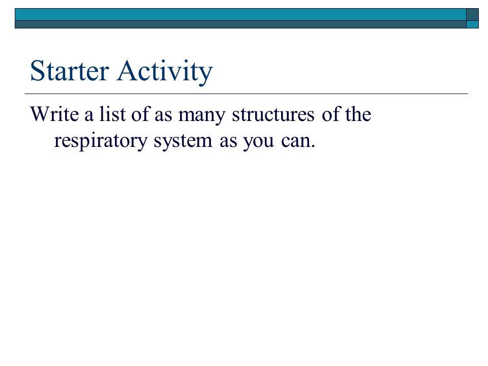 Starter Activity Write a list of as many structures of the respiratory system as you can.
